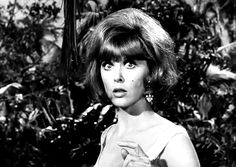 Tina Louise in Gilligan's Island Tina Louise, Great Photos, Cool Pictures, Funny Pictures, Gifs, What Gif, Mood Gif, Viejo Hollywood, Vintage Kiss