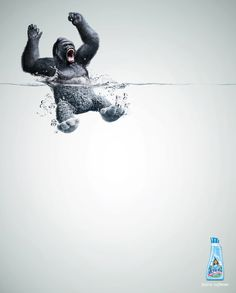 Currently loving this Lenor fabric softener ad (from wild animal to plush)