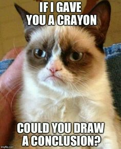 Most Funny Quotes : QUOTATION – Image : Quotes Of the day – Life Quote Grumpy cat funny, grumpy cat meme …For more grumpy cat humor visit www.bestfunnyjoke… Sharing is Caring Funny Quotes, Hilarious Memes, Grumpy Quotes, Funny Pics, Funny Images, Funny Stuff, Quotes Quotes, Grumpy Meme, Funny Work