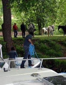 Paseos a caballo en el Río Lot