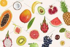 Too good to be fruit. by Natalka Dmitrova on @creativemarket apple, asian, background, banana, berries, bright, cactus, citrus, color, design, dragon, drawing, drawn, exotic, food, fruit, hand, health, healthy, illustration, isolated, juice, juicy, kiwi, lemon, lime, mandarin, nature, orange, organic, painting, papaya, peach, pineapple, pink, red, seeds, set, sketch, slice, summer, sweet, tangerine, thai, thailand, tropical, vector, water, watercolor, vegetable, dragon fruit, summer…
