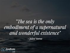 People love the ocean for different reasons. We have compiled 25 inspiring quotes about the ocean and the effect it has on people. Quotes About The Ocean, Ocean Quotes, Inspiring Quotes, Business Ideas, Plastic, Future, Tattoos, People, Diving