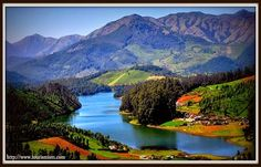 Ooty is capital of the Nilgiris District. This hill station located in Tamil Nadu state in South India. Its main attraction is mile long tea gardens. There are blue Mountains, why it's called blue mountain is unknown whether this name comes from the blue smoke from trees or by the area that covered by the 'Kurunji' flower.