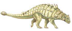 Euplocephalus --- Site officiel : http://www.dinosauria.ca/