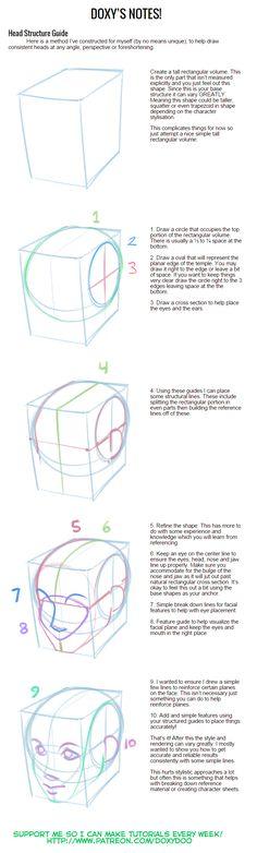 Guía Estructura Cabeza
