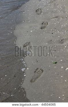 Photo : footprints on the shore Water Images, My Photos, Stock Photos, Footprints