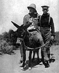 """Teniente Richard Alexander """"Dick"""" Henderson, Cuerpo Médico de Nueva Zelanda. Batalla de Gallipoli. - Lt. Richard Alexander """"Dick"""" Henderson, New Zealand Medical Corps. Battle of Gallipoli."""