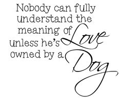 YES #dogs #doglove