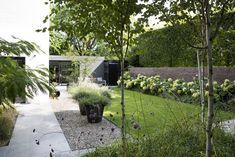 Hydrangea and verbena Love Garden, Green Garden, Casa San Sebastian, Garden Architecture, Woodland Garden, Contemporary Garden, Private Garden, Terrace Garden, Garden Inspiration