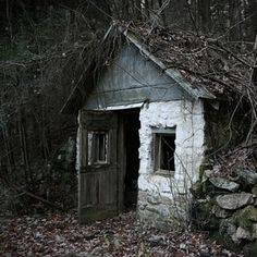 Little abandoned shake... somewhere in a forest
