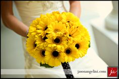 Bridesmaid bouquets! Yellow Gerber Daisies