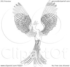 Wonderful Picture of Phoenix Coloring Page . Phoenix Coloring Page Phoenix Bird Coloring Pages At Getdrawings Free For Personal Bird Coloring Pages, Free Printable Coloring Pages, Adult Coloring Pages, Coloring Books, Pictures Of Phoenix, Phoenix Tattoo Design, Sun Logo, Picture Engraving, Phoenix Bird