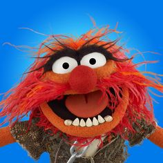 Welcome to the Disney Muppets homepage. Browse movies, watch videos, play games, and meet the characters! Happy Birthday Animals, Birthday Wishes Funny, Animal Birthday, Birthday Memes, Les Muppets, Animal Muppet, Muppets Most Wanted, The Muppet Show, Muppet Babies