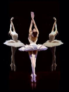 WHITE SWANS | Swan Lake BALLET | BALLERINAS | re-pinned by http://www.cupkes.com/
