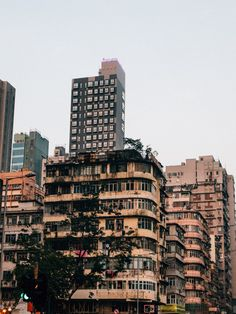 Hong Kong: What to do & what to see in weniger als 8 Stunden National Geographic, Empire, Hongkong, Skyline, Building, Travel, Memories, Europe, Shopping Center