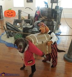 Captain Olivia and her Pirate pal Scooby - 2013 Halloween Costume Contest via @costumeworks