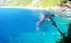 Best Beaches in Liguria: Where to Go » BeautifuLiguria Blog