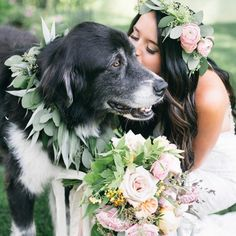 And the award for the cutest ring bearer goes to this sweet pup!  See what other #weddingworthy pics made our list of top Instagrams of the week by clicking the link in bio!  #regram via : @shannonelizabeths