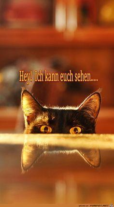 Hey! Ich kann euch sehen....