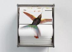 Juan Fontanive, 'Ornithology A.,' 2014, DUTTON