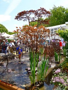 Chelsea Flower Show  This is on my bucket list!