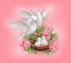 http://www.pennyparker1.com/Doves.jpg