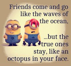 """Friends come and go like waves of the ocean... But the true ones stay like an octopus in your face."""