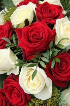 """Happy week for everyone ❤❤🌹🌹🍃💛💛🌹🌹🍃❤❤"" Beautiful Flowers Pictures, Beautiful Rose Flowers, Beautiful Flowers Wallpapers, Rose Pictures, Beautiful Flower Arrangements, Love Rose, Amazing Flowers, Pretty Flowers, Rose Tumblr"
