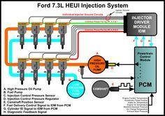 Belt    diagram    for Ford 73 liter power stroke diesel