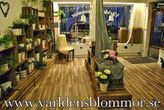 Landskrona Florist Send Flowers Landskrona Sweden Världens Blommor Norra Långgatan 16 26131 Landskrona Sweden +46 418 65 11 59 www.varldensblommor.se
