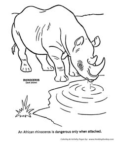 Wild African Rhinoceros Coloring Page Free Printable Animal Sheets