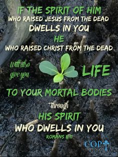 Romans 8:11 But if the Spirit of Him who raised Jesus from the dead dwells in you, He who raised Christ from the dead will also give life to your mortal bodies through His Spirit who dwells in you.