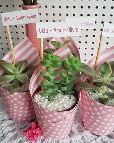 Suculentas Diy, Cactus Y Suculentas, House Plants Decor, Plant Decor, Wedding Favors, Wedding Gifts, Baby Shower Souvenirs, Border Embroidery Designs, Wedding Giveaways