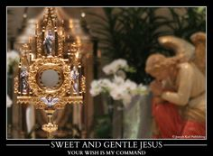 Catholic - Easter is a time to continue your renewal to grow in the Resurrected Christ