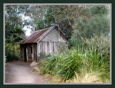 Old wood and tin house - Australia