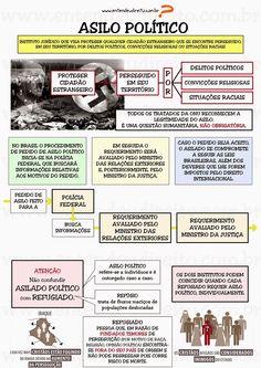 ENTENDEU DIREITO OU QUER QUE DESENHE ???: EXCLUSÃO DE ESTRANGEIROS: DEPORTAÇÃO, EXPULSÃO, EXTRADIÇÃO, ASILO POLÍTICO, ASILO DIPLOMÁTICO
