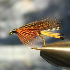 Wet Flies Archives - Fiery Brown