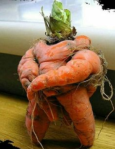 Really funny pics images gallery of the day. Today we have accumulated some really funny pictures with captions for you Weird Fruit, Funny Fruit, Weird Food, Funny Food, Funny Humor, Funny Pictures Images, Really Funny Pictures, Funny Pics, Fruit And Veg
