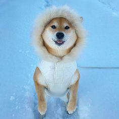 eskimo kiss?