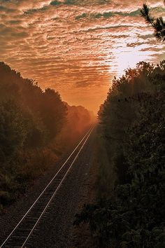 Sunrise In South Carolina ~ Photo by...The LightHunter©