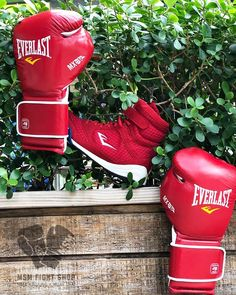 Everlast MX Series Boxing Gloves with Everlast Elite Boxing Shoes. Red set perfect for training and Sparring. Get your set today from MSM Fight Shop.  #Mexicanmade #everlast #handmade #boxing #fighting #fight #fitness #training #sparring #training