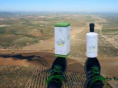 Equilibrio perfecto: estuche de regalo y botella de AOVE Alba (extraido de aceiteuna verde). Un regalo singular para nuestros más apreciados