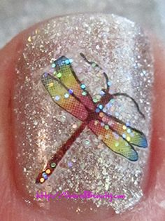 Example of a dragonfly nail art decal over Ozotic #609