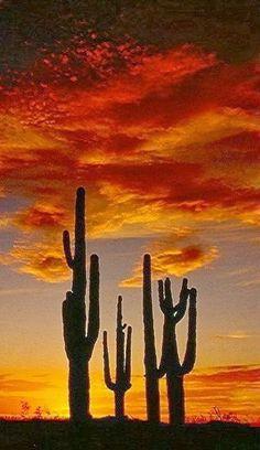 sunset north mountain , Arizona