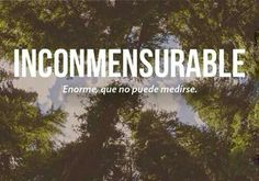 Inconmensurable