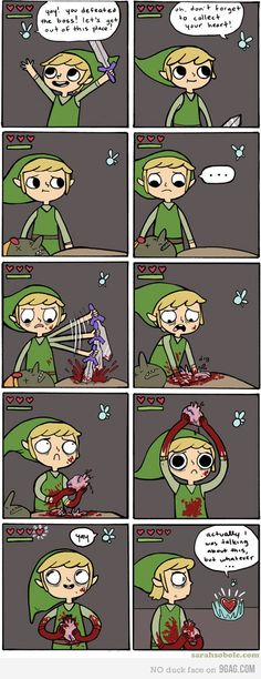 Link took it too far