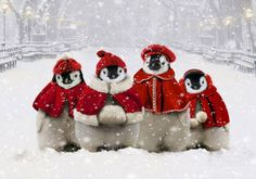 Cute Penguins for Christmas!
