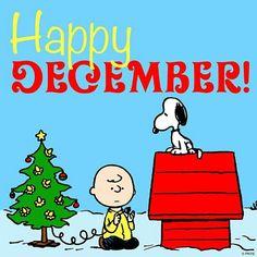 ...and Merry Christmas!
