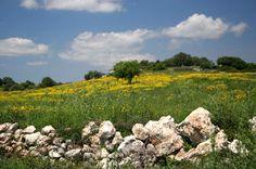 A me i paesaggi mi incantano molto.1E Alberghiero - Presentazione PERSONALE - Community - Google+