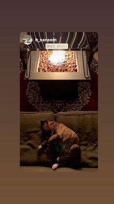Your best friend can enjoy your Heat Warden too! Fire Pit Heat Deflector, Gas Patio Heater, Gas Fires